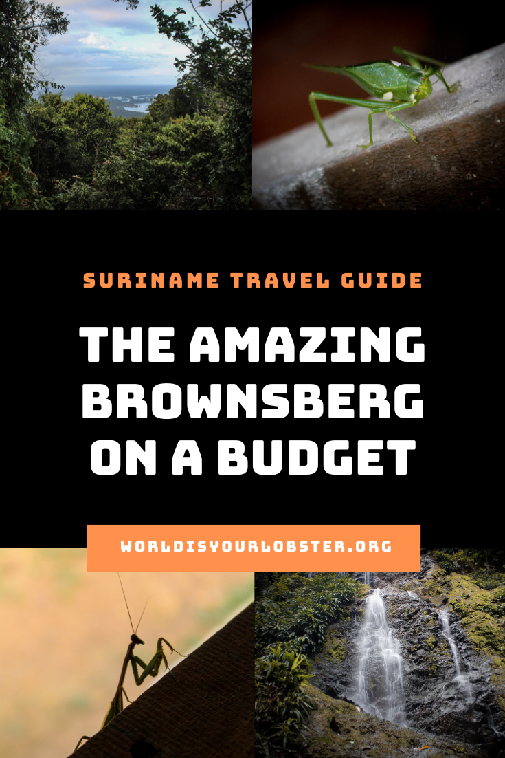 suriname travel guide
