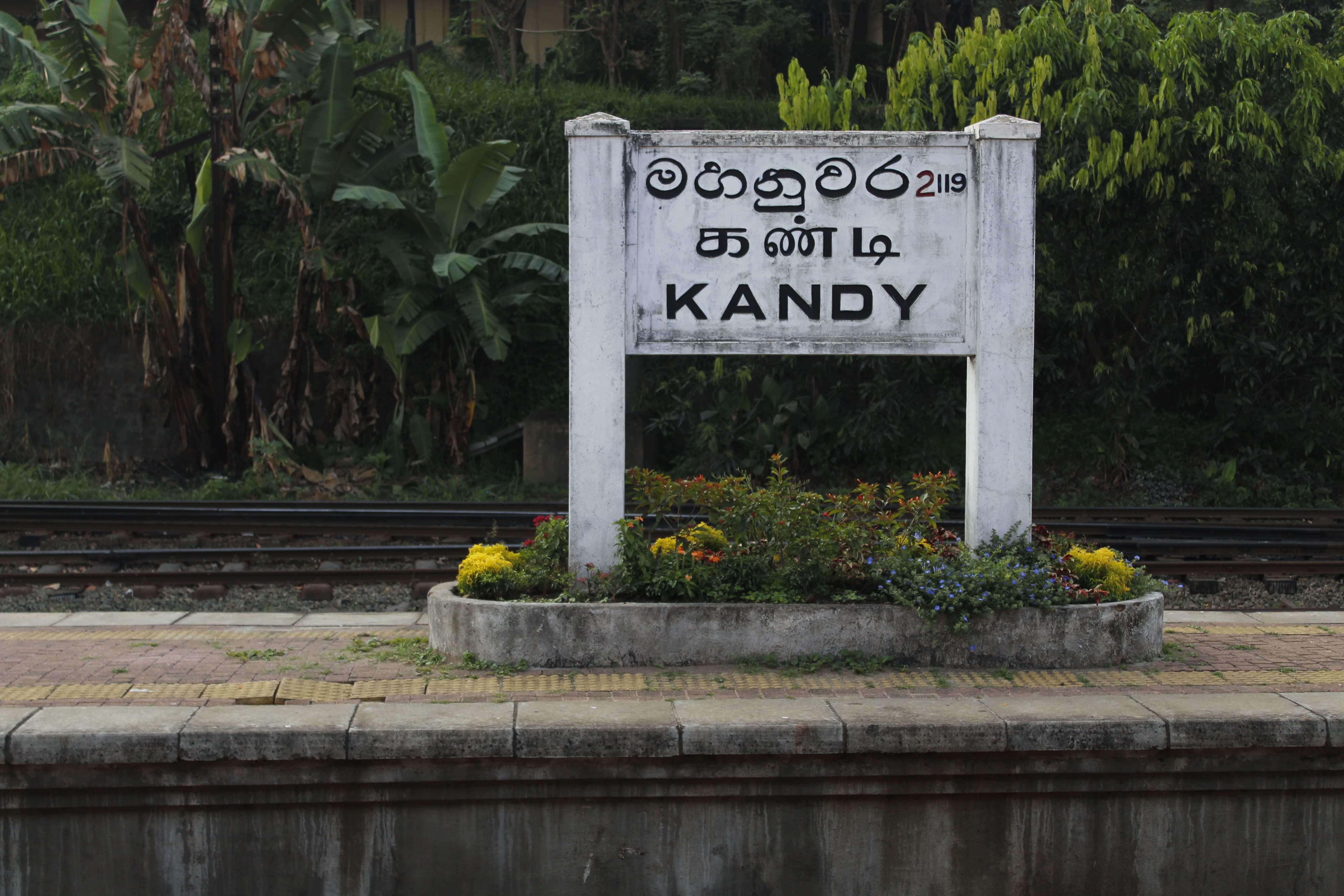 Kandy to Nuwara Eliya train Sri Lanka