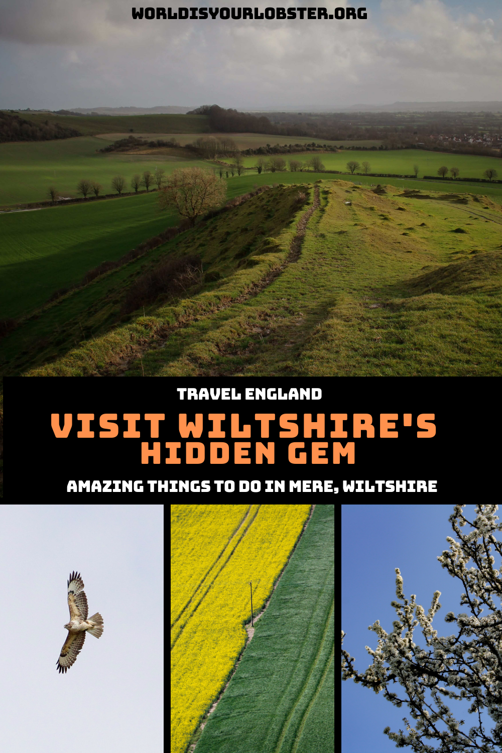 Wiltshire travel guide